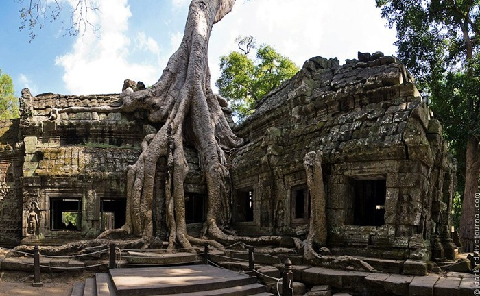 Ta Prohm, un templo en el estado natural de Angkor - Asiatica Travel - 1