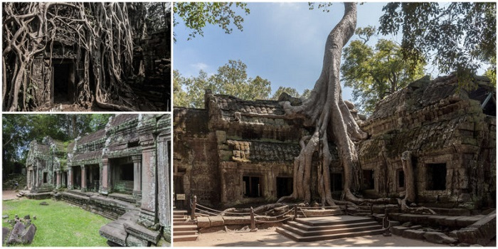 Ta Prohm, un templo en el estado natural de Angkor - Asiatica Travel - 3